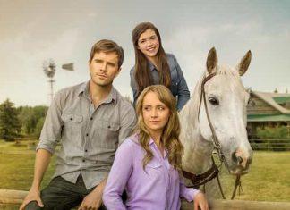 Heartland Season 12 & Season 13 on Netflix