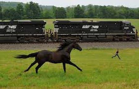 norfolk southern mainframe horse