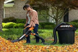 Worx Trivac Blower & Mulcher with Leaf Pro