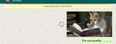 How to create your own GIFs with WhatsApp and easily use them in any other app