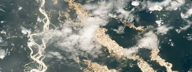 """NASA shows the """"rivers of gold"""" in the Amazon seen from space: a shocking picture of illegal mining"""